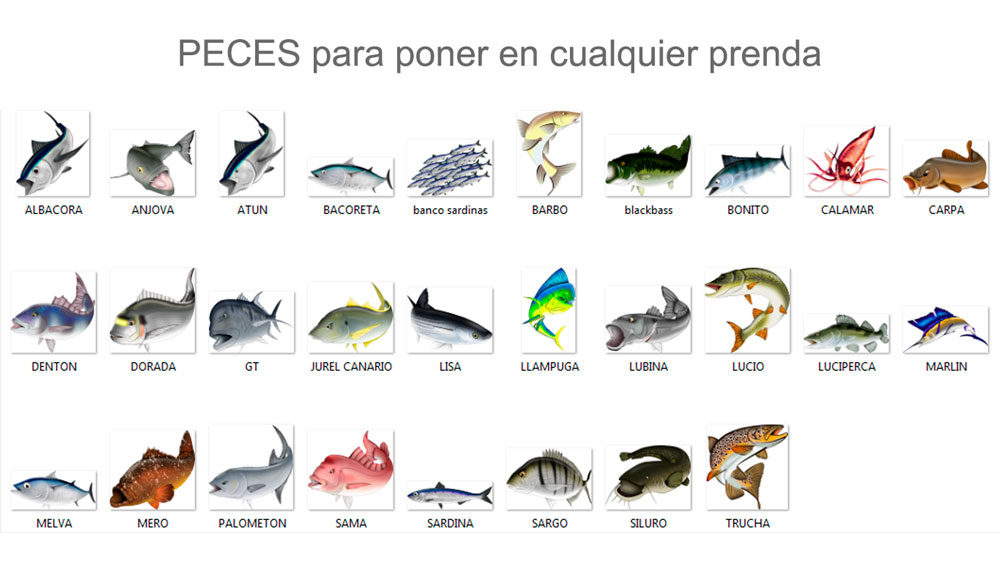 peces roshi fishing